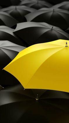 yellow umbrella color splash
