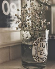 recycled diptyque candle. baby's breath.