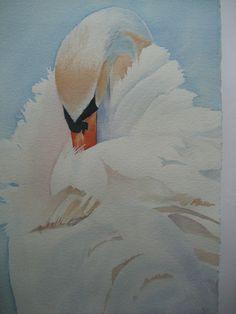 Swan Aquarell Grossartiges Bild!