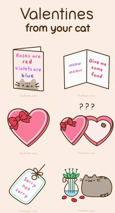 Cats Havent Quite Grasped the Concept of Sentiment Yet Pusheen Valentine
