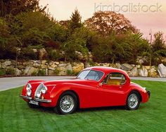 1953 Jaguar XK120 FHC (Fixed Head Coupe) My Daddy had one of these, but it was white with camel colored leather upholstery....the car went very fast...I remember looking once at the speedometer and it read 125mph....