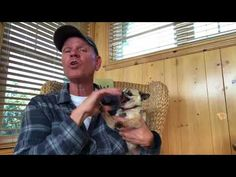 Paul Rugg: People ask me how I relax (I cried and peed my pants at the same time! Funny Animal Memes, Funny Animals, Cute Animals, Funny Memes, Funny Videos, Dog Pictures, Best Funny Pictures, Funny Cute, Hilarious
