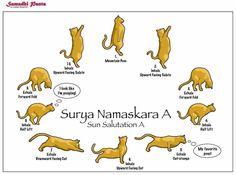 #yoga #surya #namaskara #yourhealthcoach