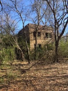 Caddo Parish Pea Farm Shreveport Caddo Parish, Native American Photos, Abandoned, Hunting, House Styles, Places, Travel, Left Out, Viajes