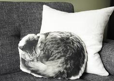 SLEEPING CAT Canvas Printed Pillow