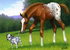 SPOTTED SUMMER FRIENDS.....this appy filly has found a pup in her summer pasture