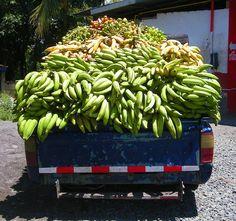 Neue Bananen,  http://diebananen.blogspot.de/
