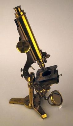 Darwin's achromatic microscope, made by James Smith in 1846. Darwin used it to work on barnacles and plants.