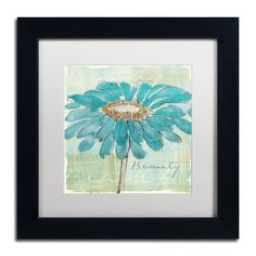 'Spa Daisies I' by Chris Paschke Framed Graphic Art