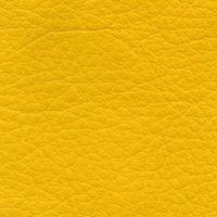 Toronto, gelb (0,5) - Leder - gelb