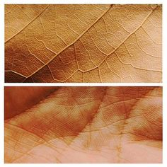 The Best Diptych Photography that Contains The Most Amazing Implied Meaning A Level Photography, Conceptual Photography, Photography Projects, Creative Photography, Nature Photography, Human Body Photography, Human Body Art, Reportage Photo, A Level Art