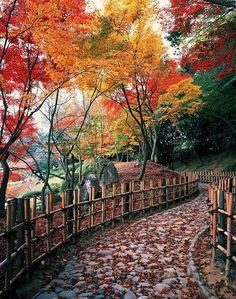 Autumn colored.