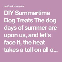 DIY Summertime Dog Treats The dog days of summer are upon us, and let's face it, the heat takes a toll on all of us! Help your pooch and feline friend keep their cool with some of these doggy-licious summertime treats thanks to the Banfield website Peanut Butter Pupsicles for Dogs Ingredients: 4 cups rice milk or vanilla yogurt 1 medium