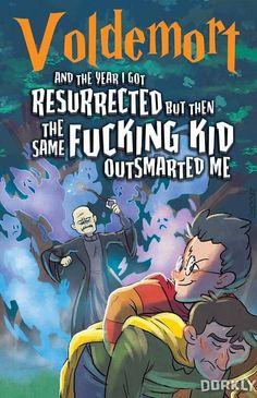 The Harry Potter Series: Voldemort's Version