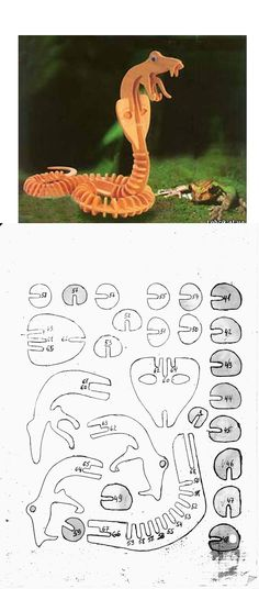 COBRA NADJA Cardboard Crafts, Wood Crafts, Diy And Crafts, Paper Crafts, Scroll Saw Patterns, Wood Patterns, 3d Paper, Paper Toys, Cnc Projects