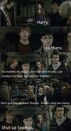 harry potter and the deathly hollows part two before the battle of hogwarts. Harry Potter Deathly Hallows, Harry Potter Jokes, Harry Potter Hermione, Ginny Weasley, Harry Potter Fandom, Harry Potter World, Weasley Twins, Hermione Granger, Hogwarts