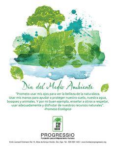 Dia del Medio Ambiente