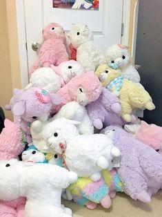 I require them. Kawaii Plush, Cute Plush, Kawaii Cute, Alpacas, Alpaca Peluche, Llama Alpaca, Kawaii Room, Cute Stuffed Animals, Cute Toys