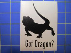 Got Dragon? Bearded Dragon Decal - Sticker 3x4 Any Color