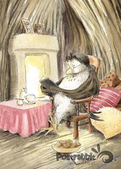 Owl the Reader