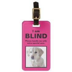 #photo - #[About My Dog] Blind Deaf Cat Dog Luggage Tag