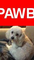 Please spread the word! Paige was last seen in Tucson, AZ 85710.    Nearest Address: Near S Kolb Rd & E 22nd St