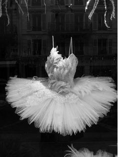 Feather tutu from Repetto, Paris. This is my favorite costume because of the feathers extending to the neckline and to the hips and opening to a tutu. Tutu Ballet, Ballet Dancers, Ballerinas, Ballerina Dress, Dance Outfits, Dance Dresses, Pointe Shoes, Ballet Shoes, Feather Tutu
