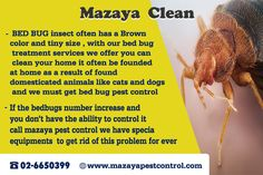 For elimination all types of bugs contact with the best company for bed bug control in Emirates visit us on website http://www.mazayapestcontrol.com/bed-bug-control-treatment/ call us on telephone 02-6650399