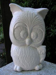 Owl and baby bank