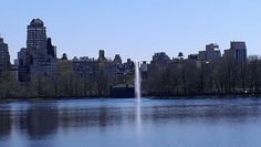 Central  P New York City, New York Skyline, Travel, Voyage, New York, Viajes, Traveling, Nyc, Trips