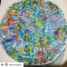Instagram media desenhoscolorir - Magnífico! By @allynneasfa