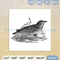 Lark Digital Image Printable Illustrated by VintageRetroAntique