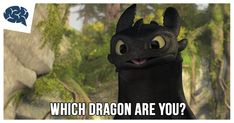 Which Dragon Are You? | BrainFall How To Train Your, How Train Your Dragon, Pixar Movies, Disney Movies, Bambi Characters, Friend Quiz, Woody And Buzz, Hits Movie, Disney Princes