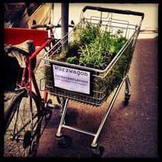guerilla gardening berlin grow pinterest gardening garten und g rtnern. Black Bedroom Furniture Sets. Home Design Ideas