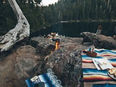 camp vibes #WildTraveller