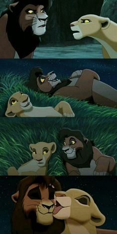 Kovu and Kiara are so cute! Kovu and Kiara are so cute! Lion King 2 Kovu, Lion King Funny, Lion King Movie, Disney Lion King, Disney Love, Disney Art, Disney Pixar, Funny Disney, Kiara And Kovu