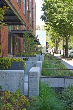 Landscape Architecture Design, Landscape Walls, Residential Architecture, Urban Design Concept, Urban Design Plan, Green Street, Water Management, Residential Complex, Rain Garden