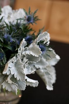 A cool and unusual floral arrangement pairing dusty miller with spiky blue thistle. Floral design by Sarah of Blossom and Branch. Blue Wedding Flowers, Wedding Blue, Blue Weddings, Dream Wedding, Vertical Succulent Gardens, Succulent Centerpieces, Tall Centerpiece, Wedding Centerpieces, Colorful Succulents