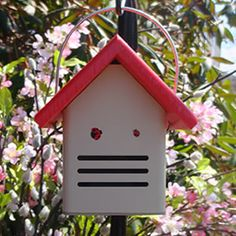 Eco-Ladybug House- Ladybugs are great because they eat insect pests such as aphids and scale insects that can attack your plants. Ladybugs seek shelter during cold nights and also over the winter. Provide a house for them so they'll stay in your garden! Awesome!!!!