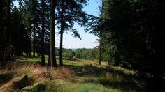 Bestwiger Panorameweg - in der Nähe von Heinrichsdorf