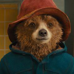 Best Movies of 2018 (So far) Paddington Film, Paddington Bear Party, The Danish Girl, His Dark Materials, Film Images, Movie Themes, 2018 Movies, Embroidery Art, Love Movie