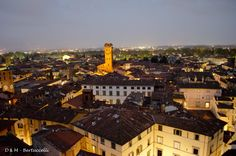 """Lucca by night, view from the """"Delle Ore"""" Towers"""