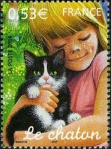 Kitten (Felis silvestris catus)