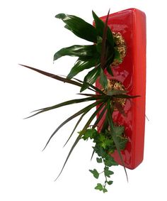 Another great find on #zulily! Red Tri Planter by flowerbox #This versatile planter can be hung on the wall or displayed flat as a living centerpiece. Perfect for growing succulents, herbs and more, it is great way to accent the décor no matter how you use it.   Plants not included 4.3'' W x 13'' H x 2.4'' D Ceramic Imported