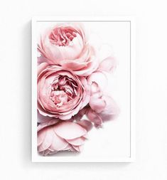 Pink Peonies Peony Flower print in Blush Pink and White. This beautiful art is printed on genuine premium HP Satin Semi Gloss Paper. Your print will have a gorgeous and lustrous colour- rich finish. Peony Flower, Flower Wall, Flower Prints, Wall Prints, Poster Prints, Art Print, Poster Wall, Canvas Prints, Shabby