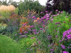 Tall grass at left is 'Karl Forester' calamagrostis, lots of Verbena bonariensis, orange short flowers are 'Profusion' zinnias, orange dahlia is the wonderful 'Andries Orange', phlox at right is 'Laura', and dark leaved tree in upper right is 'Cistena' plum.