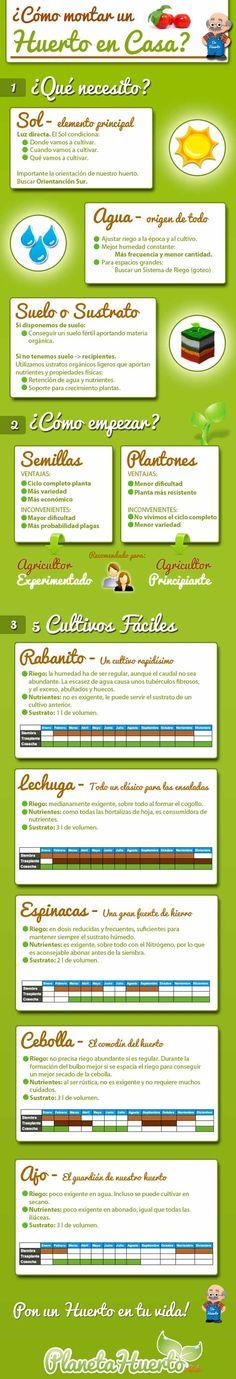 vida saludable  ¿Cómo montar un huerto en casa? #infografía #RetaTuLadoVerde    www.verdeate.com