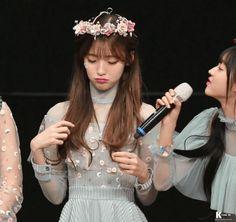 Official Oh My Girl Thread Oh My Girl Yooa, Arin Oh My Girl, South Korean Girls, Korean Girl Groups, Korean Music, Woozi, Korean Actresses, Kpop Girls, Asian Beauty