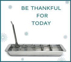 Ice trays.....for sure!!!!