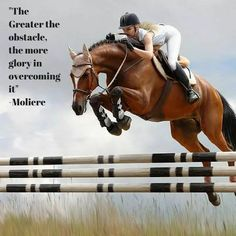 67 Best Famous People & Horse Quotes images | Horse quotes ...